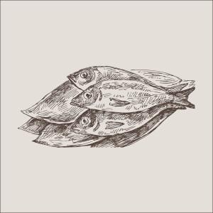 pesci-07