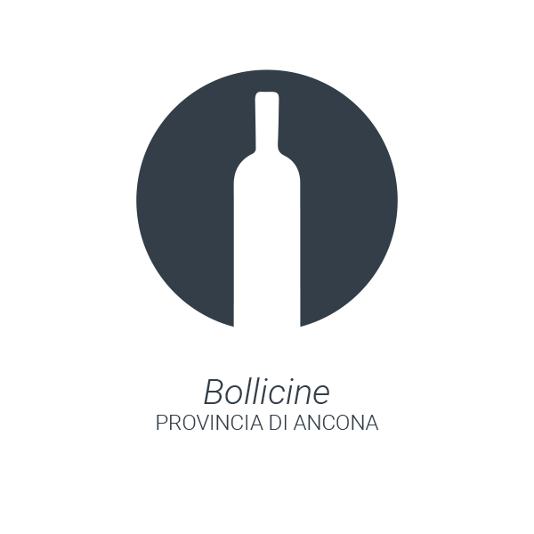 03-wine-bollicine-ancona